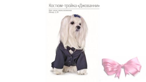 Костюм Фрак Пет