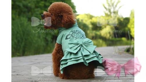 Куртка Платье