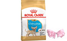 Royal Canin CHIHUAHUA PUPPY (ЧИХУАХУА ПАППИ) корм для щенков до 8 месяцев