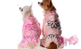 Дождевик на девочку For my Dogs
