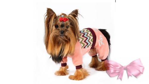Велюровый костюм For my Dog 39SS-2013