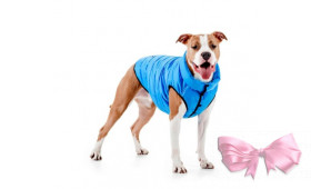 Курточка для собак AiryVest ONE
